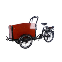 3 Wheels Pedal Electric Cargo Bike Dutch Adult Tricycle Family Bicycle Street Kids Scooter for Sale Customizable