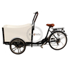 Electric Adult Tricycle Family Cargo Bike Aluminium Frame 6 Gear Speeds Drift Trike for Grocery Shopping And Children Transport