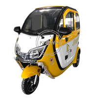 New Design EEC Approval 1000w Power Adult 3 Wheel Electric Motorized Tricycle