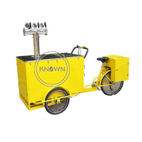 Customized Electric Cargo Tricycle for Sale Philippines Food Vending Bike with Hot Dog Ice Cream