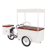 2020 New Mobile Electric Ice Cream Cargo Bike With High Capacity Freezer for Sell Cold Drinks Such As Cola Beer Adult Tricycle
